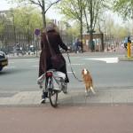 Une dame et son chien à vélo