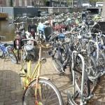 Vélos près du musée Hermitage