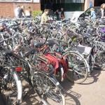 Vélos Hermitage 2