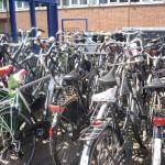 Vélos Hermitage 3